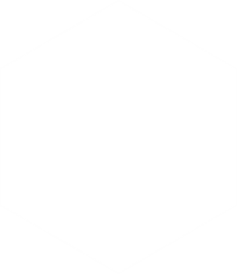 hexagon - wit.png