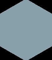 hexagon - lig blou.png