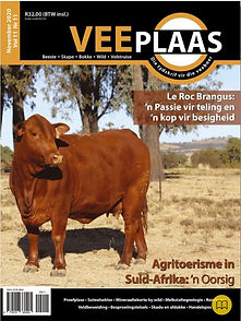 Veeplaas, November 2020 - voorblad.JPG