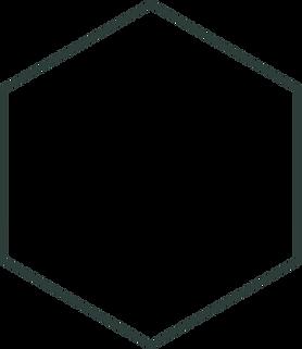 hexagon%20-%20donker%20raam%20-%2050%20t