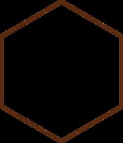 hexagon%20-%20bruin%20raam%20-%2050%20tr