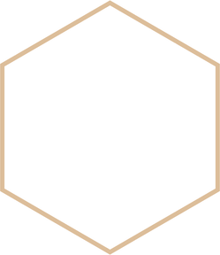 hexagon%20-%20oranje%20raam%20-%2050%20t