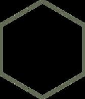 hexagon%20-%20groen%20raam%20-%2050%20tr