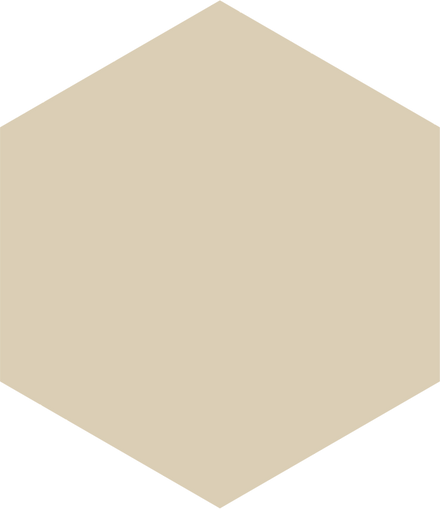 hexagon - beige - 30 transparent.png