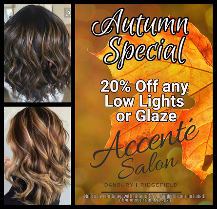 Lowlight Hairstyle Special Accente Salon