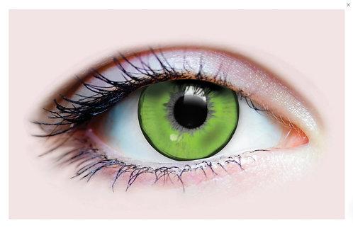 Eye Contacts - Lizard King