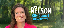 City Council Newsletter (Nov 14, 2020)