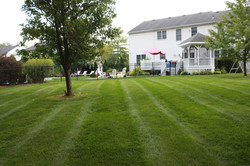 Weekly Lawn Mowing