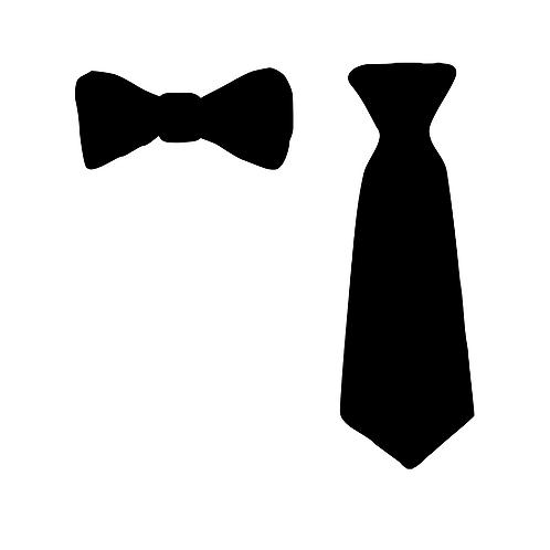 Fluga eller slips