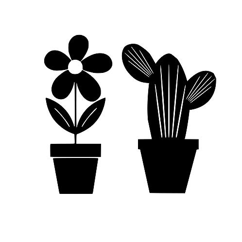 Blomma eller kaktus