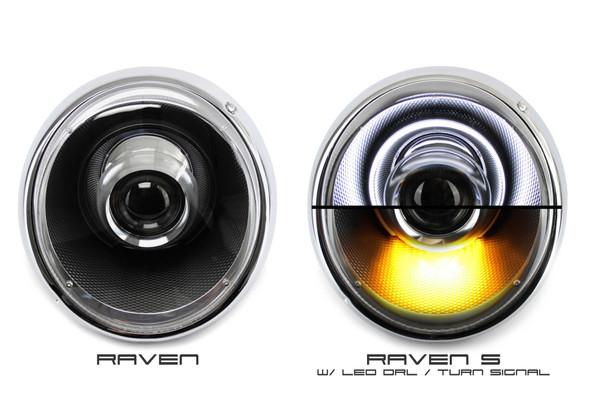 raven_and_raven_s.jpg
