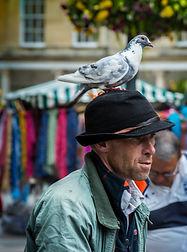 The Pigeon Man.JPG