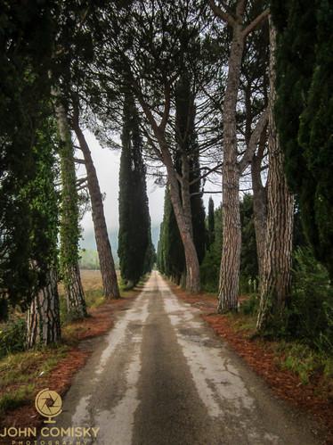 Tuscany - Road.jpg