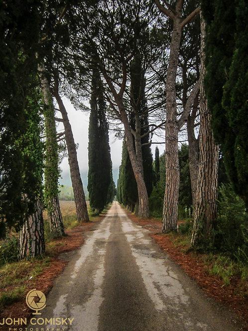 Tuscany - Road