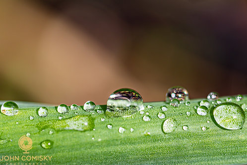 Other Stuff - Water Drops