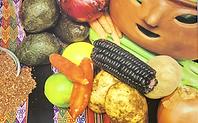 Discover Vegan Banner for Website_edited