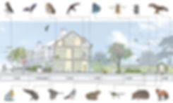 Section-revised-web-980pi-300dpi.jpg