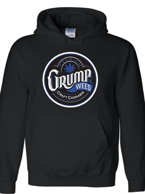 Mens Hoodie with Blue Logo