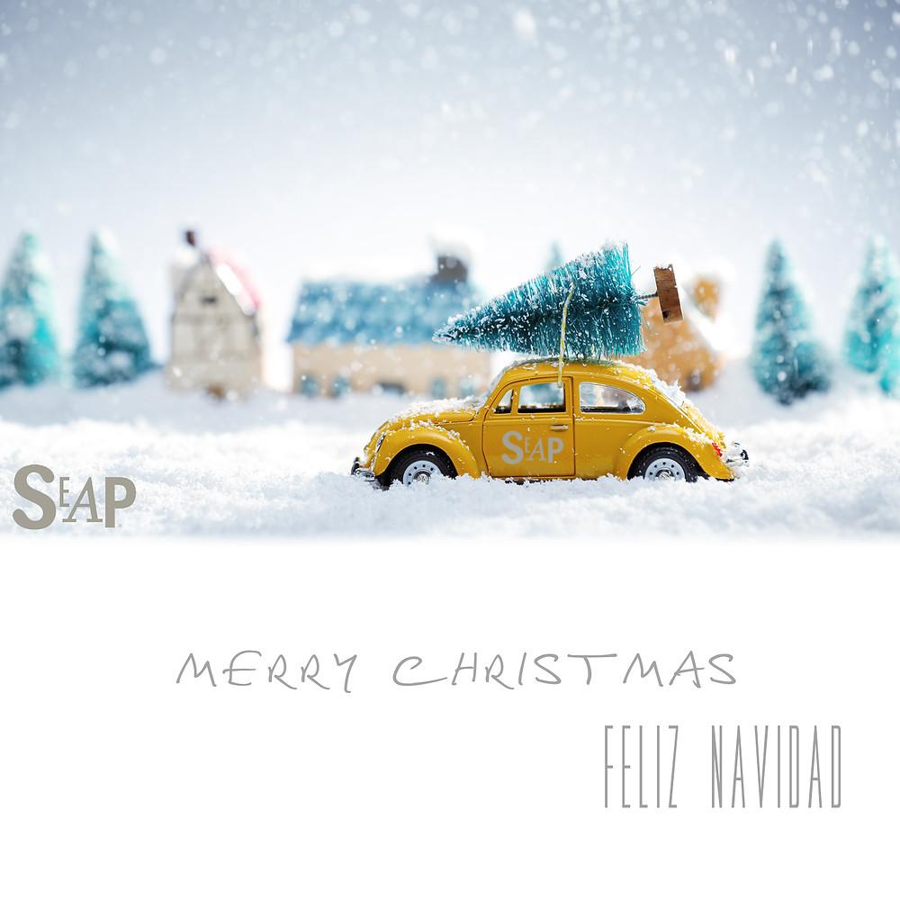feliz navidad 2014 seap.jpg