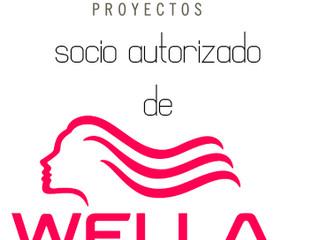 Colaboración SEAP y WELLA