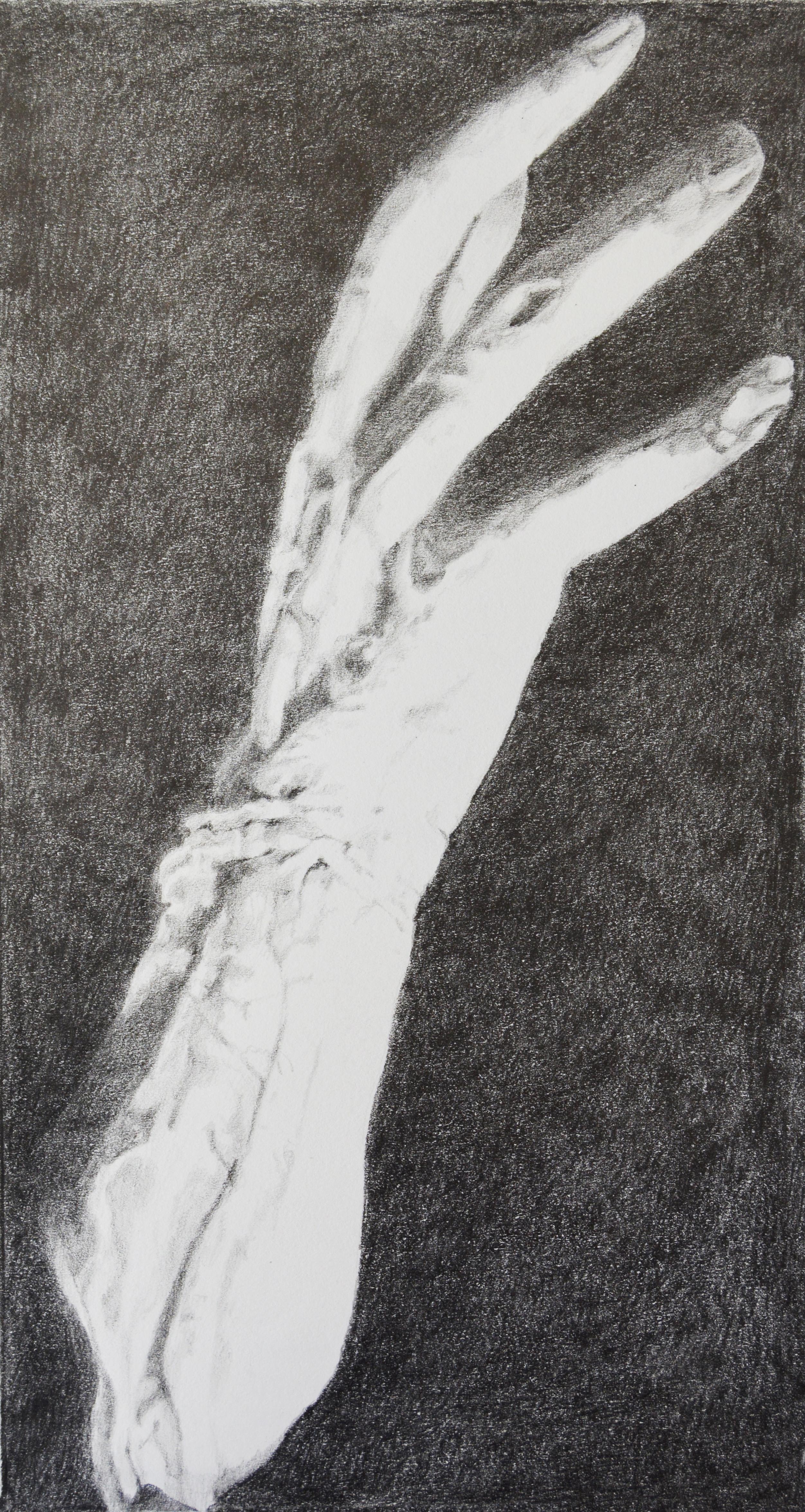Frankenstein Karloff Hand