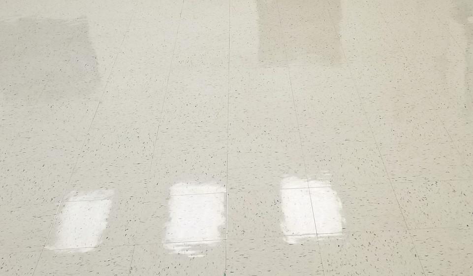 Arkad Capture Floor Care