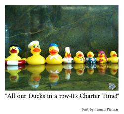Tamzn Pienaar Ready for Charter Guests!.jpg