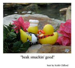 Beak smacking good