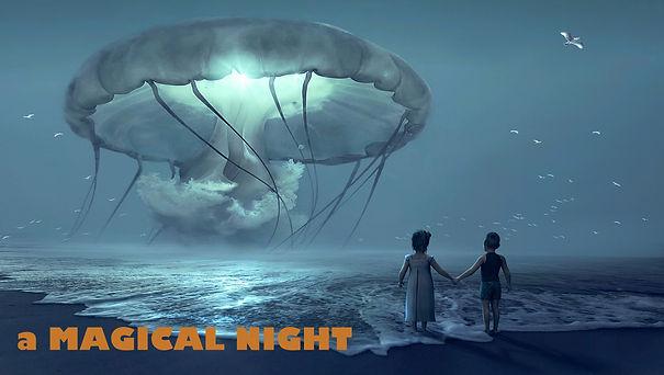 A MAGICAL NIGHT.jpg