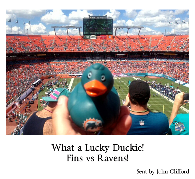 John Clifford What a lucky duckie fins vs ravens 102013.jpg