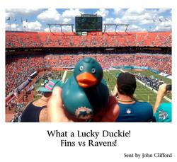 John Clifford What a lucky duckie fins vs ravens 102013.jpg