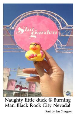 Jess Sturgeon Naughty little duck @ burning Man.jpg