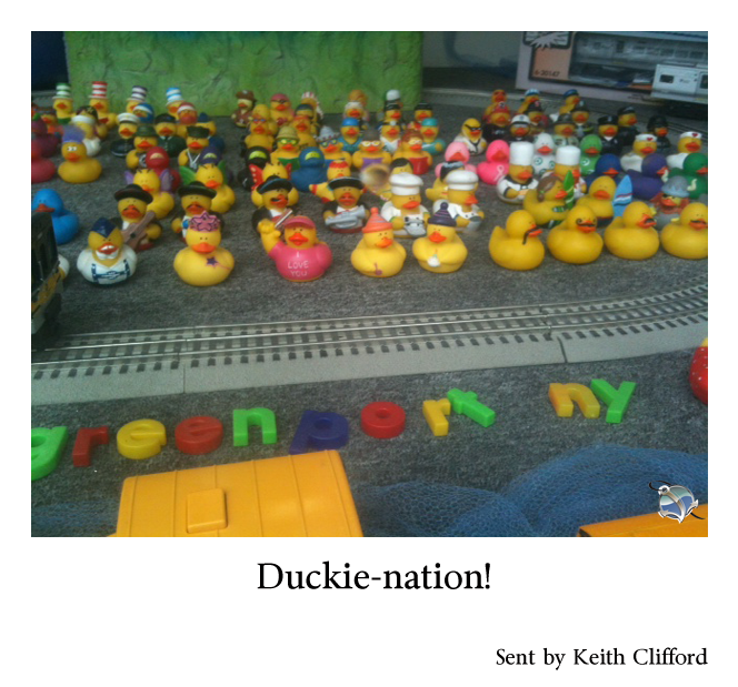 Duckienation
