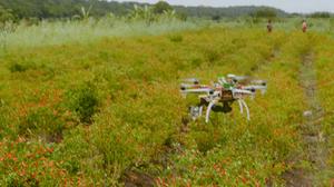 wetalkuav, wetalk, dji, dji mavic air, dji mavic pro, drones, drone, uas, uav