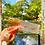 Thumbnail: Autumn Tint Lashes
