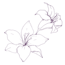 flowers 1 .png