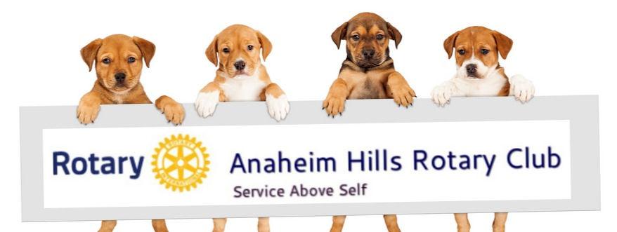 dogs-with-logo_orig_edited.jpg