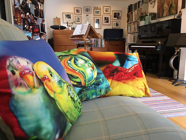 Viola Studio