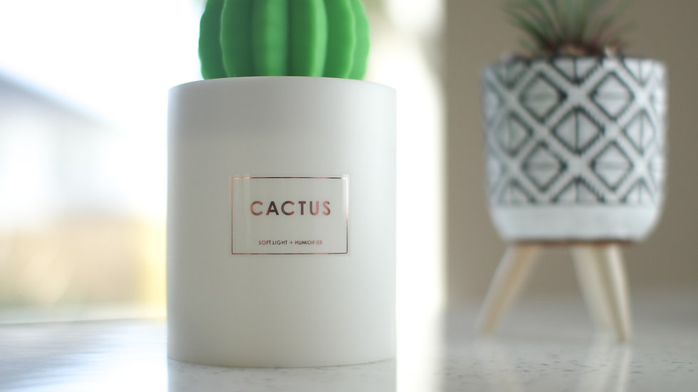 Diffuser and Night Light Cactus
