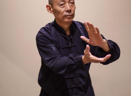 Тайцзицюань стиль Ян форма 40 движений