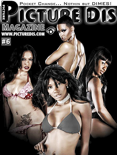 Picture Dis Magazine Issue 6