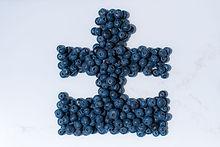 Blueberry Puzzle 2.jpg