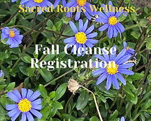 Sacred Roots Wellness- Spring Cleanse Re