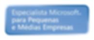 logo microsoft Partner - PME.png