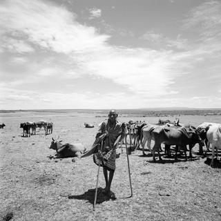 Kenya, 2016