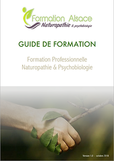 GUIDE DE FORMATION F. A. N.png