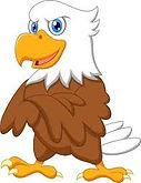 Hawk.jfif