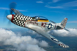 fly in a mustang