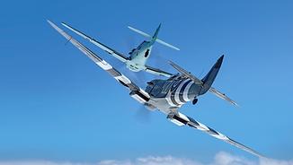 Warbird Flights