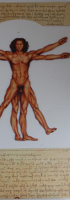 L'Homme de Vitruve - Huile sur toile